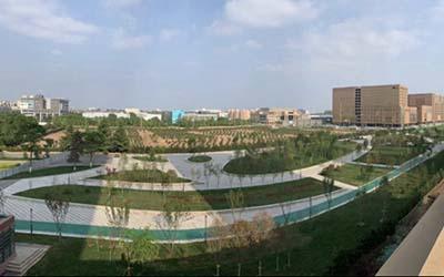 西安市政府、电视台聚焦集团西安航空基地科技走廊绿廊一期项目